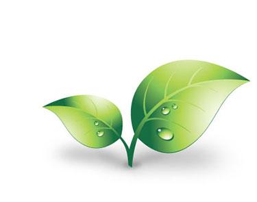 Système Éco-Vert